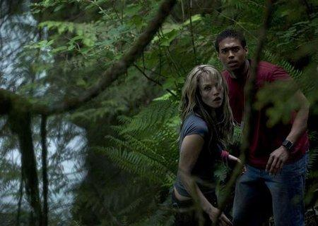 wrong turn 2. CRAZY: Wrong Turn 2 - DVD RIP