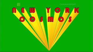 Niezapomniany New York Cosmos (2006) PL.DVBRip.XviD-pietras44
